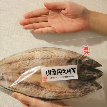 楽天ふるさと納税2018 みのだ食品の魚(干物)とろさば開きを手で持って大きさを比較している画像02