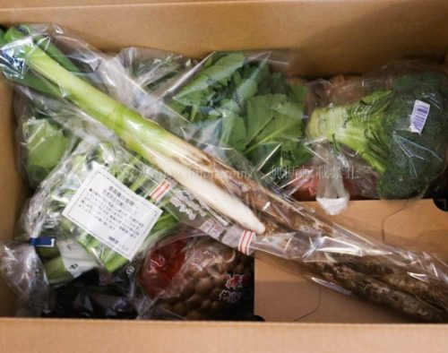 らでぃっしゅぼーや 食材宅配 新鮮野菜セット 二人暮らし夫婦 共働き