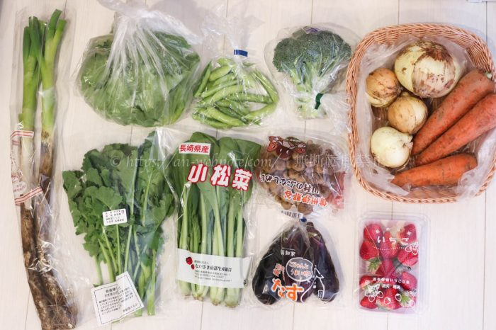 らでぃっしゅぼーや 食材宅配 新鮮野菜 土 二人暮らし夫婦 共働き