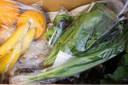らでぃっしゅぼーや 食材宅配 野菜セット 二人暮らし夫婦 共働き