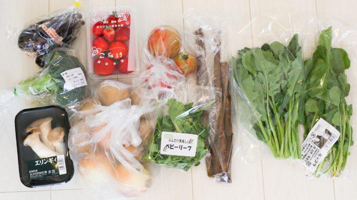 らでぃっしゅぼーや ぱれっと 口コミ 食材宅配中身 お届け内容(野菜10種M果物つき)