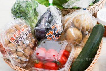らでぃっしゅぼーや パレットの中身 無農薬野菜果物